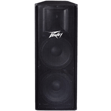 front facing peavey PV 215